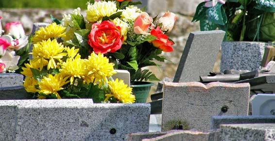 fleurs entretien.jpg